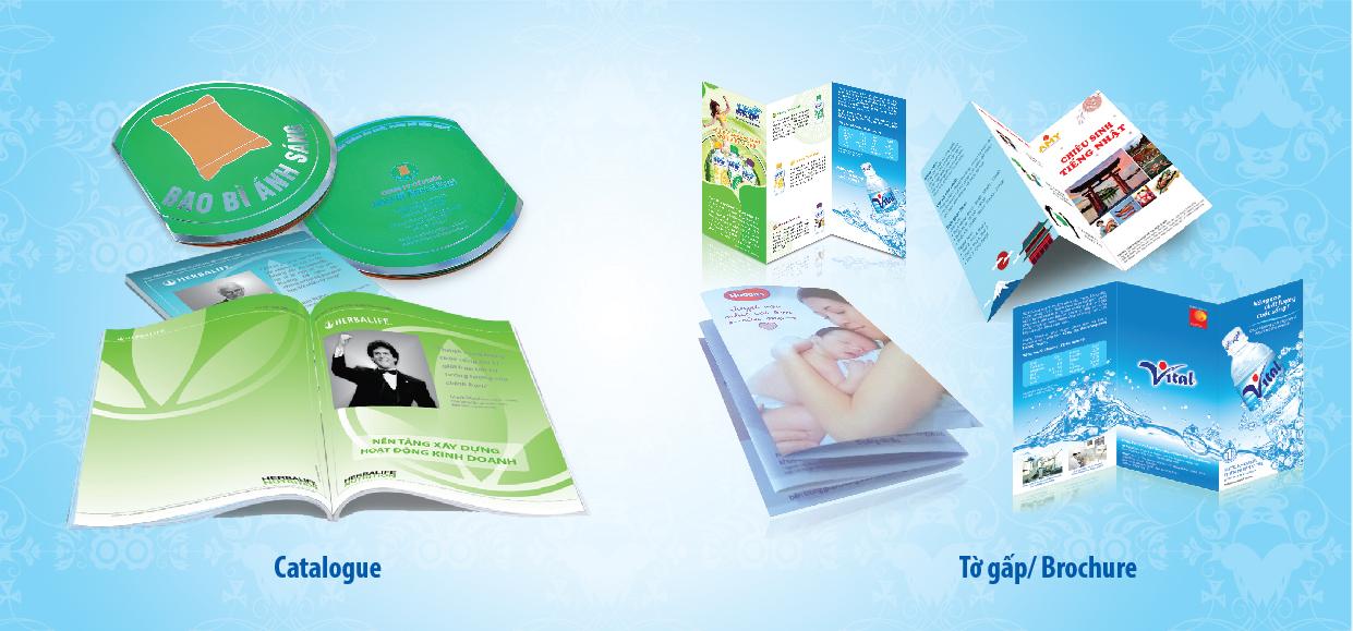 Sự khác nhau giữa Catalogue và Brochure sản phẩm