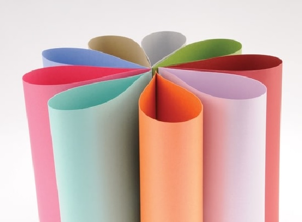 Các loại giấy in Offset thường gặp là gì?